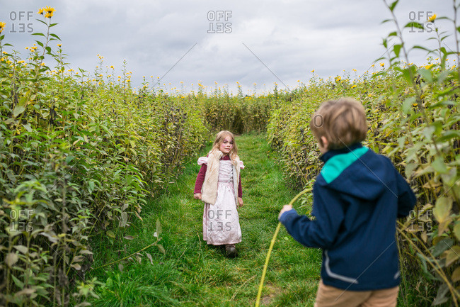 Boy and girl playing in a field of flowers
