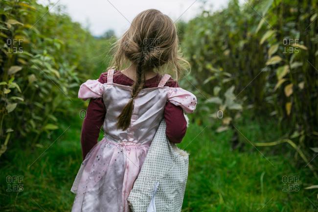 Girl wearing a princess dress in a field