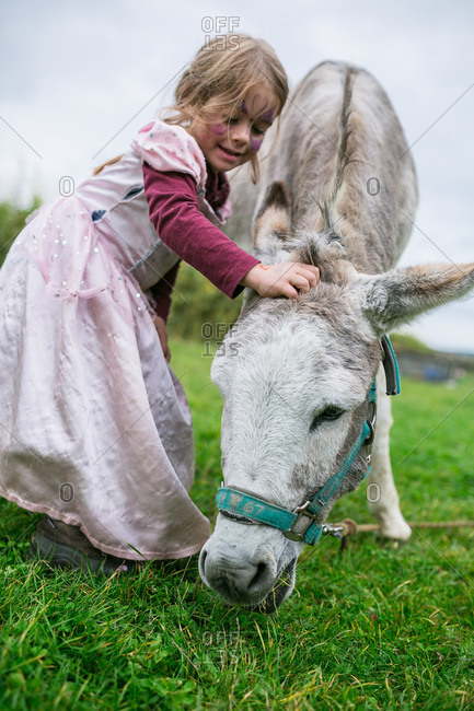 Girl petting a donkey at a farm