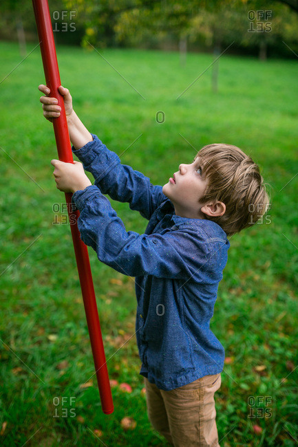 Boy picking apples with a fruit picker