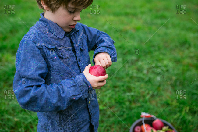 Boy with an apple he picked at an orchard