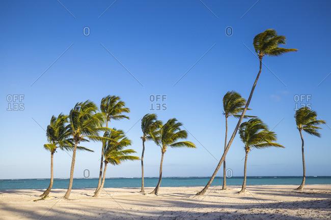 Juanillo Beach, Cap Cana, Punta Cana, Dominican Republic