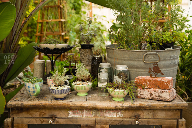 Rustic garden patio table with plants
