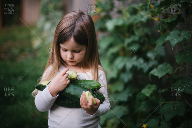 Little girl with arms full of cucumbers