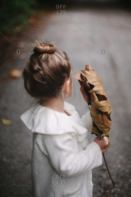 Little girl holding very large fallen leaf