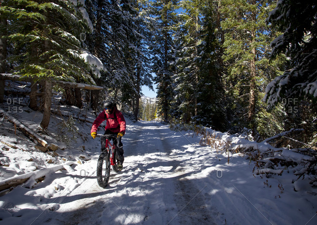 A man wearing a red jacket rides his fat tire bike through a sun spot on a snow covered logging road in the woods