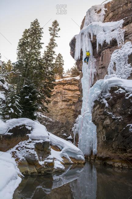 A woman ice climbing a delicate ice pillar on the Gazebo Wall in the Ouray Ice Park, Ouray, Colorado