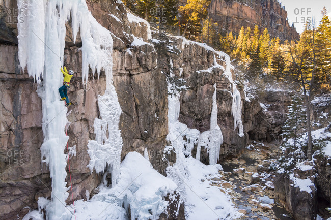 A woman ice climbing a delicate ice pillar on the Gazebo Wall in the Ouray Ice Park, Ouray, Colorado