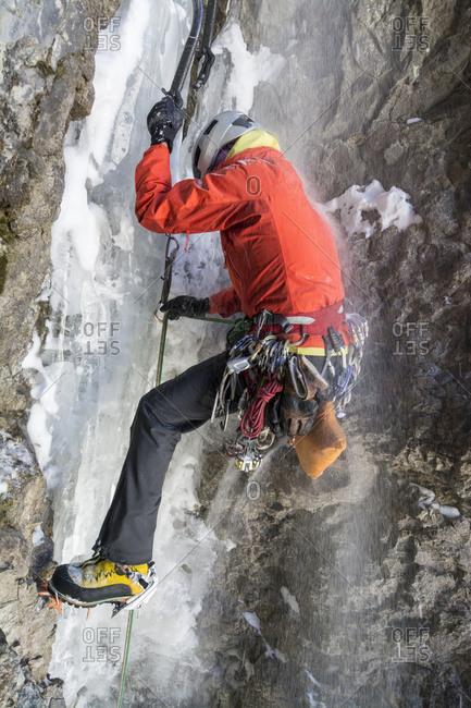 A woman ice climbing a route called  Birdbrain Boulevard on the Camp Bird Road near, Ouray, Colorado