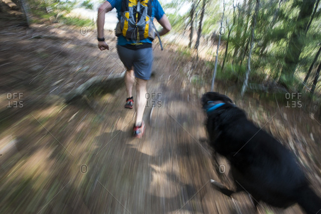 Runner and dog racing through the woods during a trail fun in New Hampshire