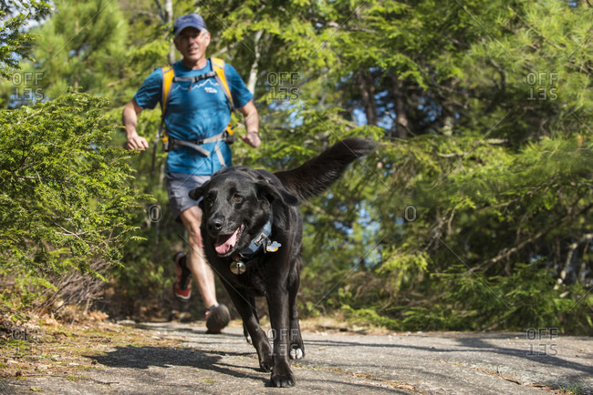 A man tries to keep up with his dog while on the trails of New Hampshire