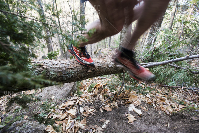 Trail runner moving over a downed tree across a trail
