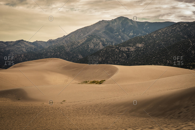Sand Dunes National Park in Colorado, USA