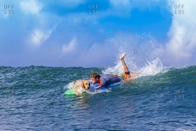 Surfer with a dog on the surfboard