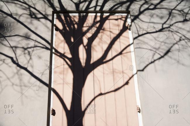 Tree shadow over pink door