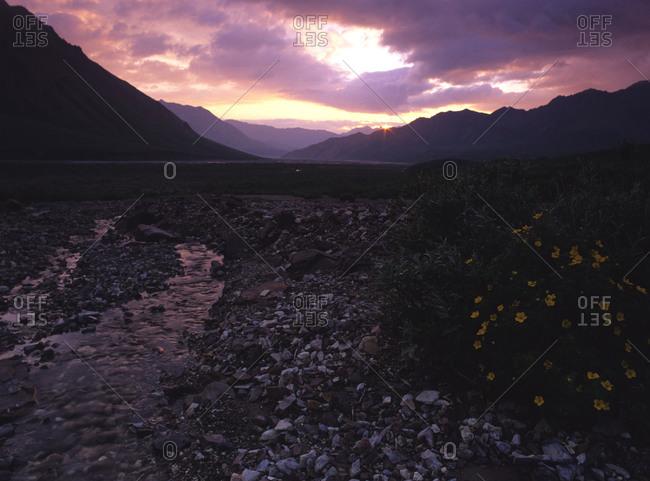 Toklat River in Denali National Park in Alaska