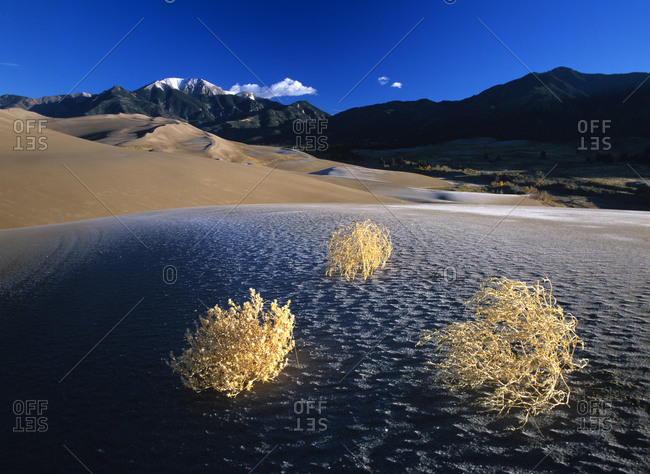 Frost in Great Sand Dunes National Park in Colorado