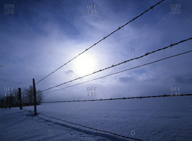 Barbed wire fence and snow in Idaho