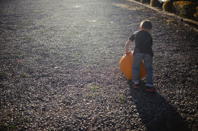Little boy rolling large pumpkin on gravel