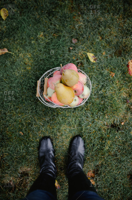 Woman wearing black leather boots standing above wire basket of apples and pears