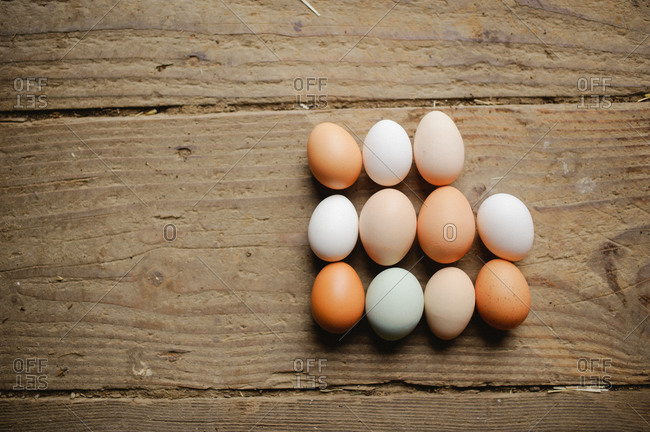 Eleven eggs in rows on old barn wood floor