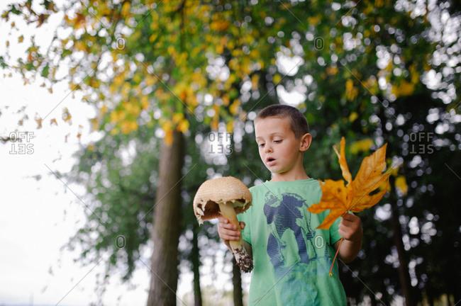 Young boy holding large mushroom and large orange leaf