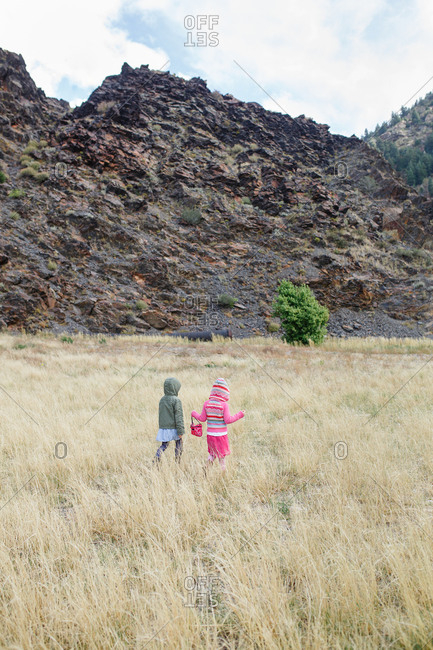 Two young girls in hooded jackets walking in field of tall grass
