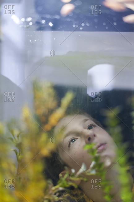 Boy peering up inside an aquarium