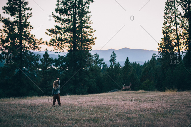 Young boy with dreadlocks standing in field watching deer