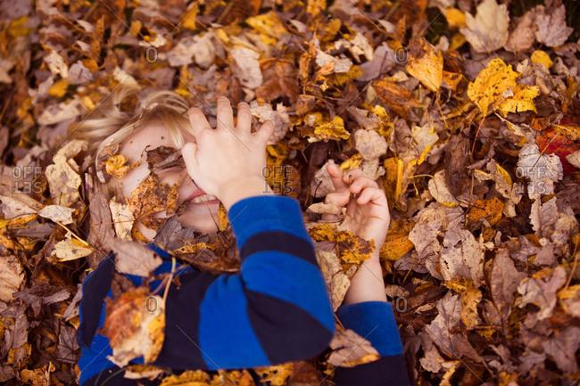 Little blonde boy playing in fallen leaves