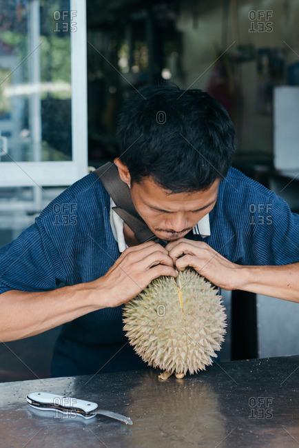Pahang, Malaysia - July 5, 2015: Man splitting apart a durian fruit