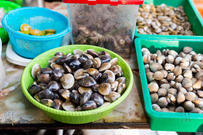 Assorted fresh shellfish at a seafood market in Malaysia