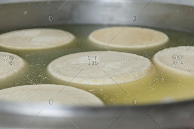 Wheels of cheese being processed at Italian plant