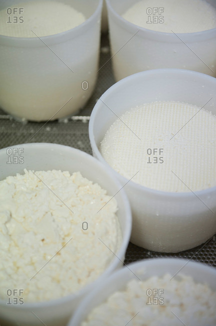Close-up of containers of cheese curds in an Italian factory producing pecorino