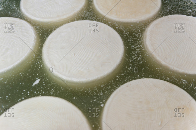 Close-up of pecorino cheese floating in whey