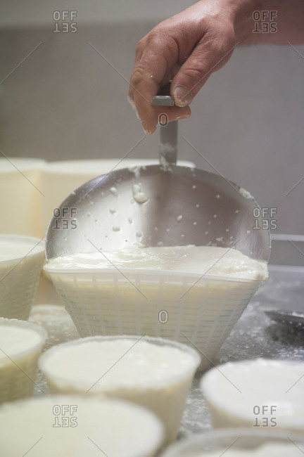 Man filling plastic baskets to form pots of ricotta cheese