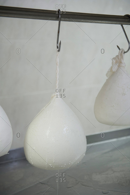 Ball of ricotta hanging in a cheese factory