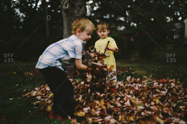 Two brothers raking leaves