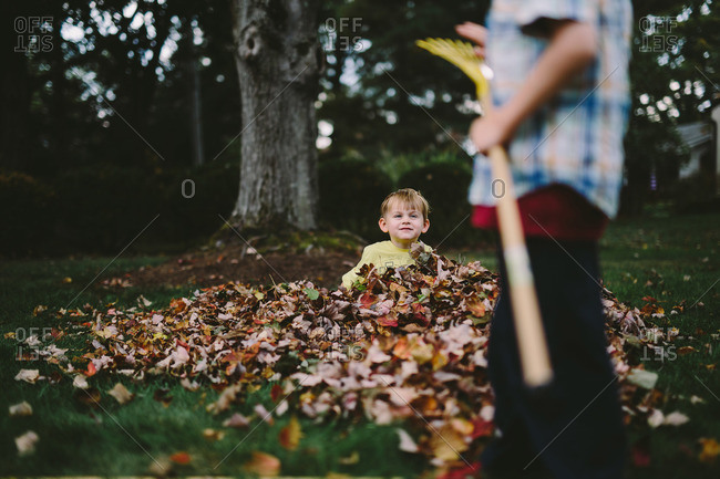 Little boy sitting in a pile of leaves looking at his brother