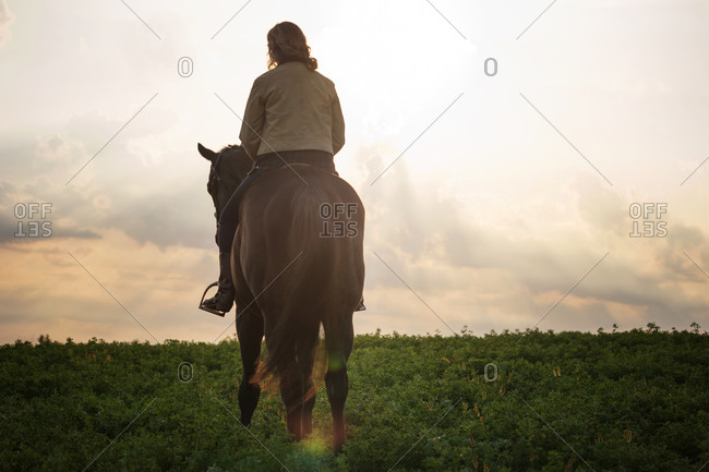 Female riding horse through meadow