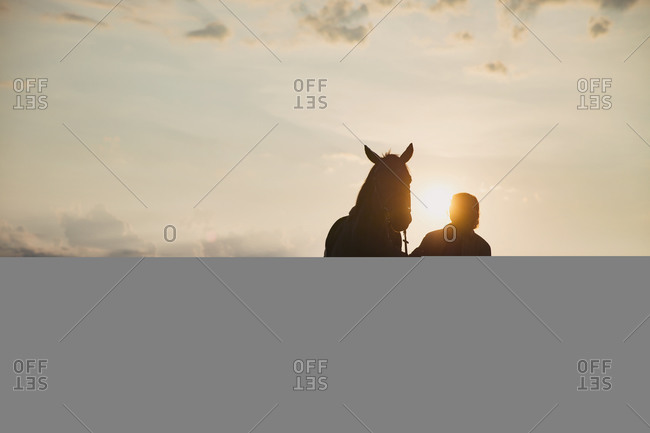 Silhouette of female standing by horse in a meadow at sundown