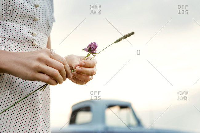 Woman holding red clover flower