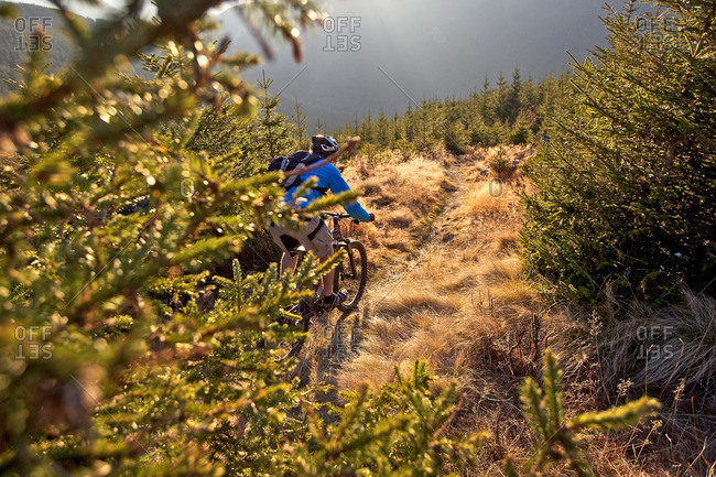 Mountain biker riding on a trail in the Alps, Alpspitz, Bavaria, Germany