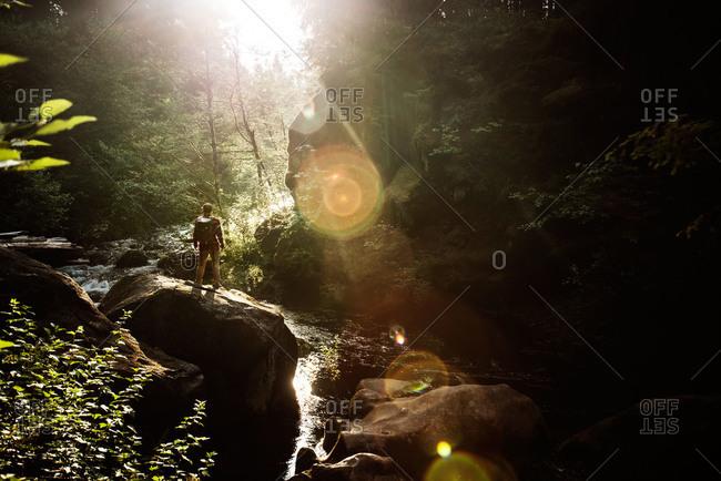 Hiker admiring a forest stream