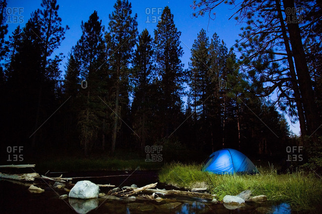 Campsite on the bank of a pond