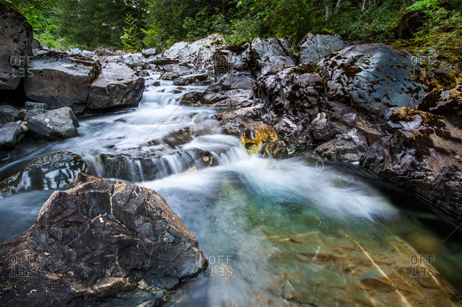 Clear stream running in interior of Vancouver Island, British Columbia