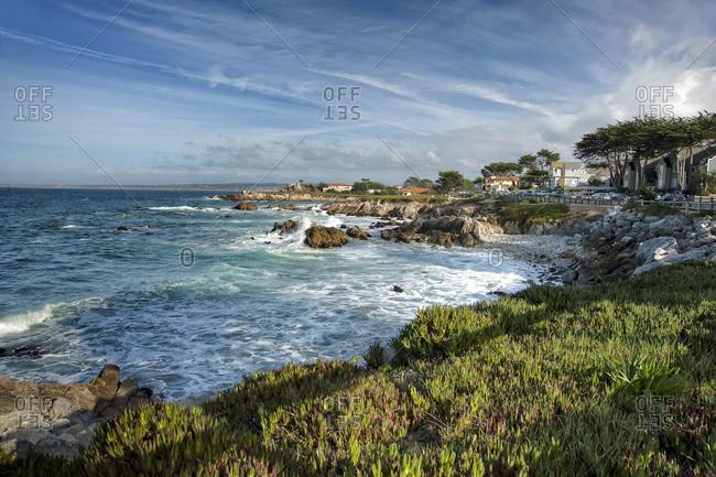 California coastline, Pacific Grove, California, USA
