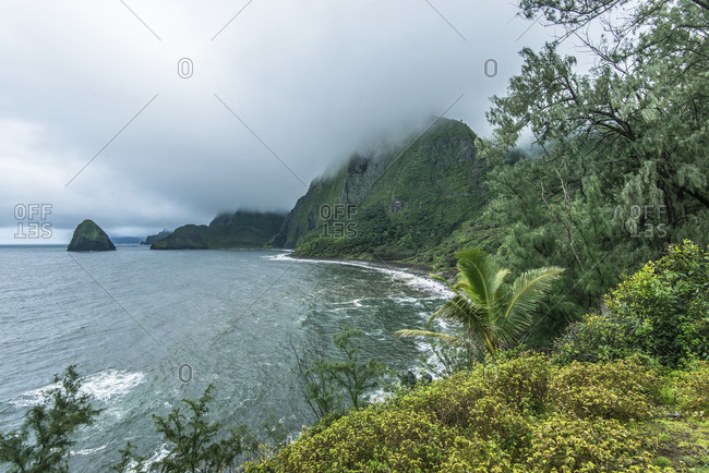 Foggy Molokai Coast, Molokai, Hawaii, USA