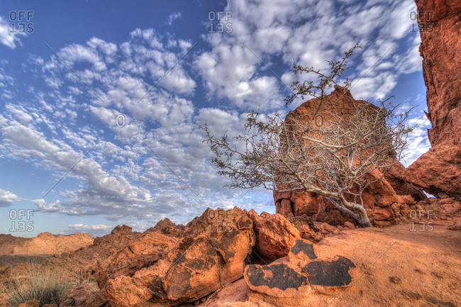 Valley of Fire State Park, Clark County, Nevada, USA