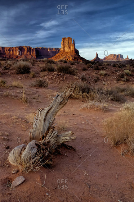 Landscape of eroded formations, Monument Valley Navajo Tribal Park, Utah, USA